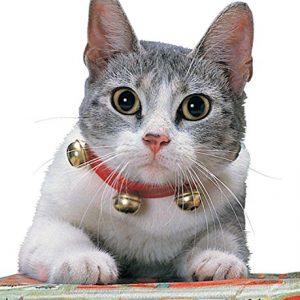 Rubies Jingle Cat Collar – One Size