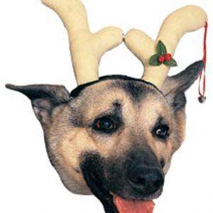 Rubies Costume Company Dog Reindeer Antlers Costume Accessory