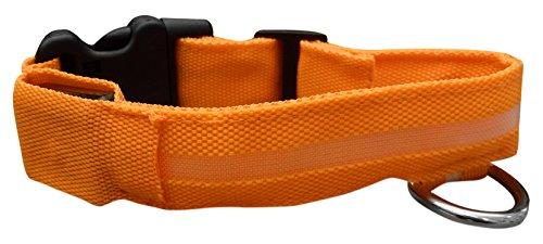 ASPCA LED Dog Collar, Medium, Orange